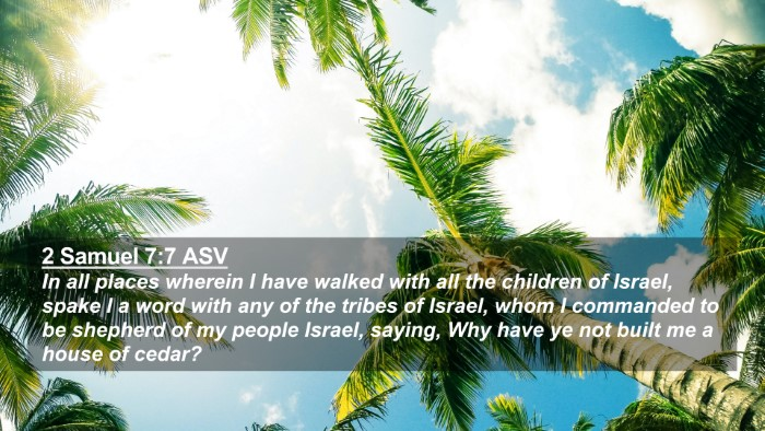 Picture 02 - 2 Samuel 7:7 ASV 4K Wallpaper - In all places wherein I have walked with all the - 4K Wallpaper Bible Verse