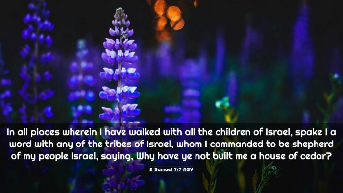 Picture 03 - 2 Samuel 7:7 ASV 4K Wallpaper - In all places wherein I have walked with all the - 4K Wallpaper Bible Verse