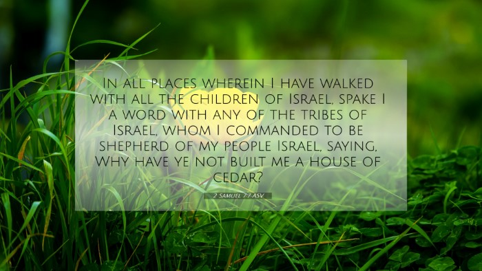 Picture 07 - 2 Samuel 7:7 ASV 4K Wallpaper - In all places wherein I have walked with all the - 4K Wallpaper Bible Verse