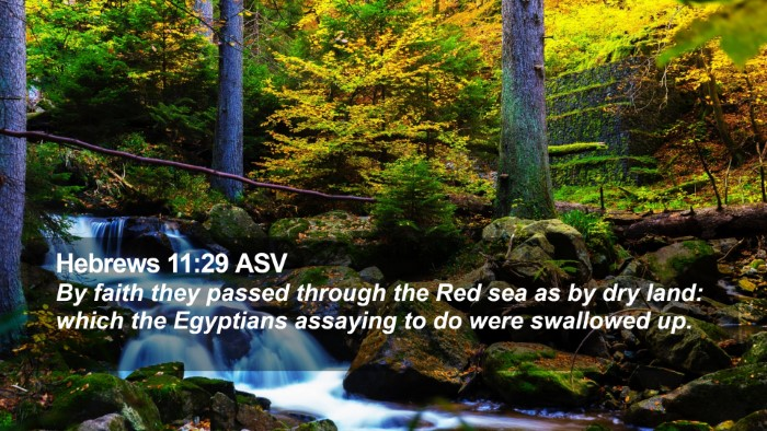 Hebrews 11:29 ASV Desktop Wallpaper - By faith they passed through the Red sea as by - Desktop Bible Verse Wallpaper