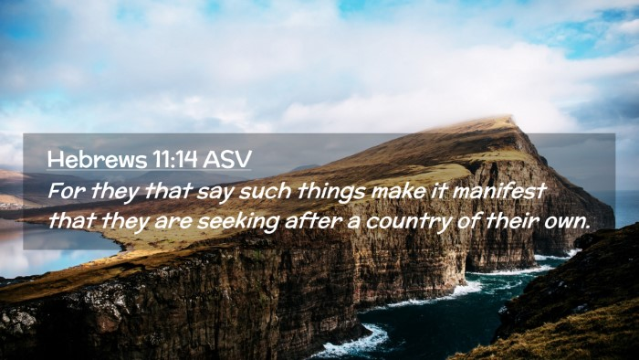 Picture 02 - Hebrews 11:14 ASV Desktop Wallpaper - For they that say such things make it manifest - Desktop Bible Verse Wallpaper