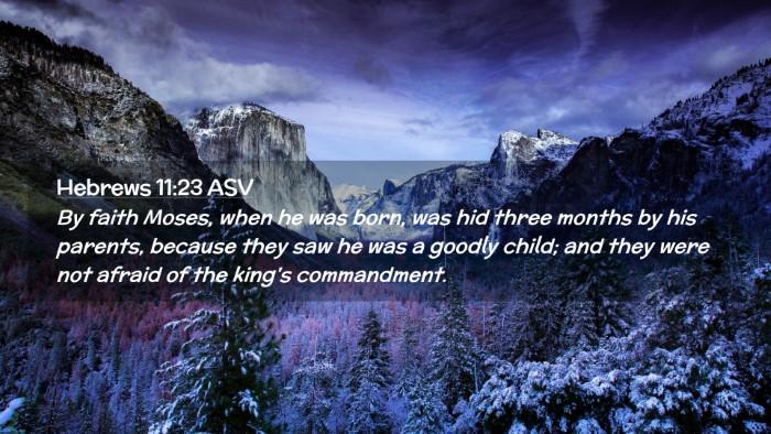 Picture 02 - Hebrews 11:23 ASV Desktop Wallpaper - By faith Moses, when he was born, was hid three - Desktop Bible Verse Wallpaper