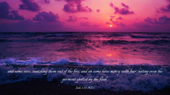 Picture 03 - Jude 1:23 ASV Desktop Wallpaper - and some save, snatching them out of the fire; - Desktop Bible Verse Wallpaper