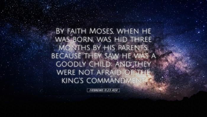 Picture 05 - Hebrews 11:23 ASV Desktop Wallpaper - By faith Moses, when he was born, was hid three - Desktop Bible Verse Wallpaper