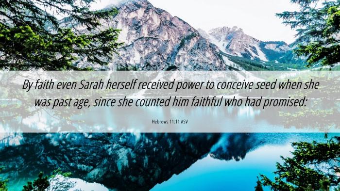 Picture 06 - Hebrews 11:11 ASV Desktop Wallpaper - By faith even Sarah herself received power to - Desktop Bible Verse Wallpaper