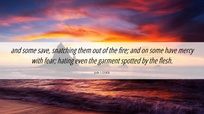 Picture 06 - Jude 1:23 ASV Desktop Wallpaper - and some save, snatching them out of the fire; - Desktop Bible Verse Wallpaper