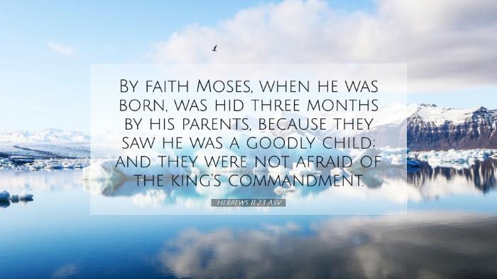 Picture 07 - Hebrews 11:23 ASV Desktop Wallpaper - By faith Moses, when he was born, was hid three - Desktop Bible Verse Wallpaper