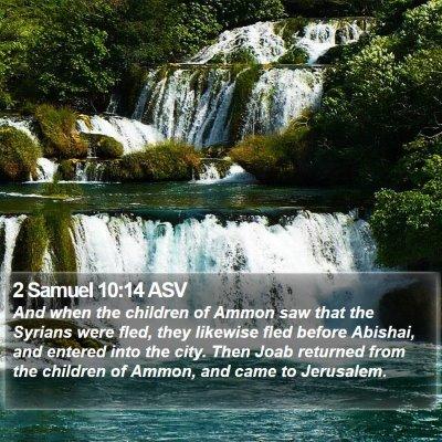 2 Samuel 10:14 ASV Bible Verse Image