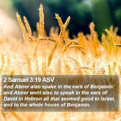 2 Samuel 3:19 ASV Bible Verse Image