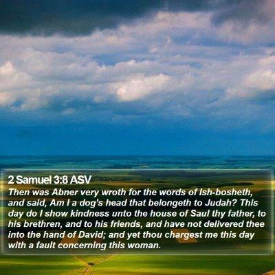 2 Samuel 3:8 ASV Bible Verse Image