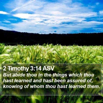 2 Timothy 3:14 ASV Bible Verse Image