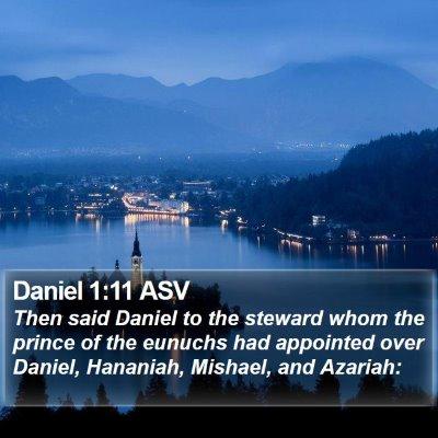Daniel 1:11 ASV Bible Verse Image