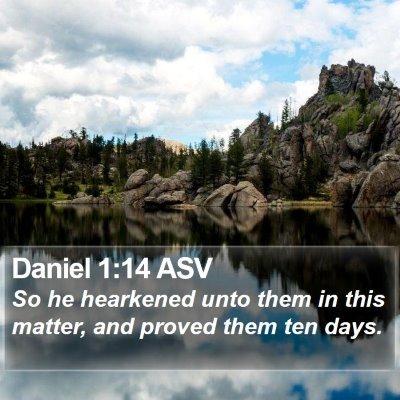 Daniel 1:14 ASV Bible Verse Image