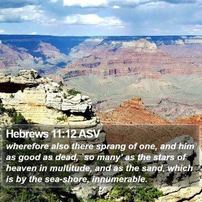 Hebrews 11:12 ASV Bible Verse Image