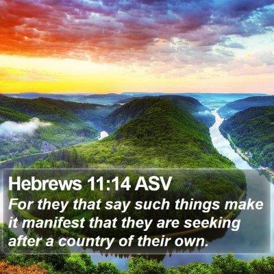 Hebrews 11:14 ASV Bible Verse Image