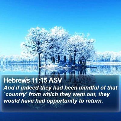 Hebrews 11:15 ASV Bible Verse Image
