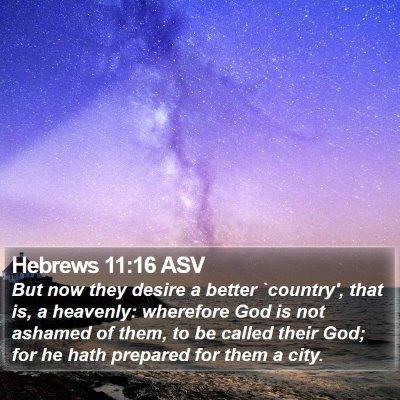 Hebrews 11:16 ASV Bible Verse Image