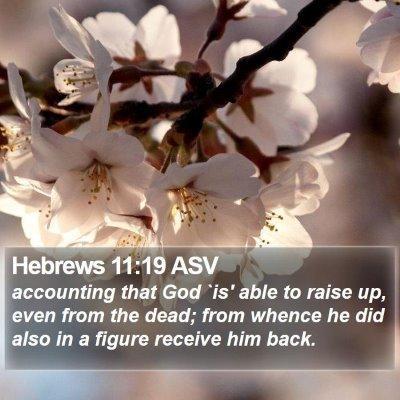Hebrews 11:19 ASV Bible Verse Image