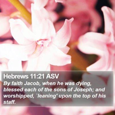 Hebrews 11:21 ASV Bible Verse Image