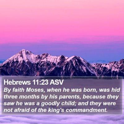 Hebrews 11:23 ASV Bible Verse Image