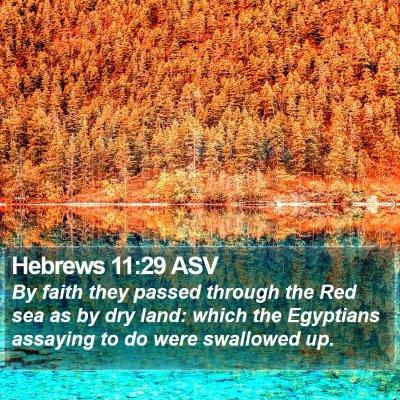 Hebrews 11:29 ASV Bible Verse Image