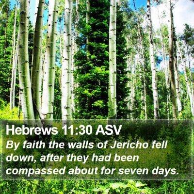 Hebrews 11:30 ASV Bible Verse Image