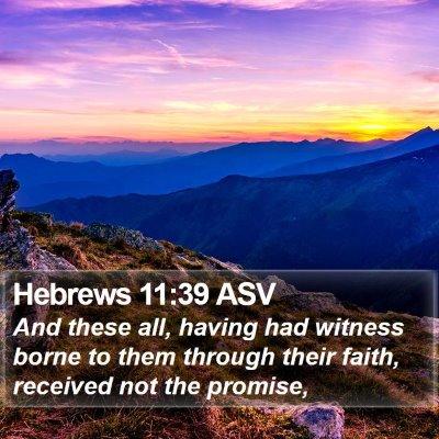 Hebrews 11:39 ASV Bible Verse Image