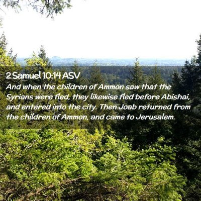Picture 02 - 2 Samuel 10:14 ASV - And when the children of Ammon saw that the - Bible Verse Picture