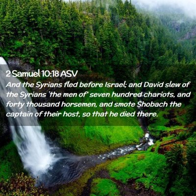 Picture 02 - 2 Samuel 10:18 ASV - And the Syrians fled before Israel; and David - Bible Verse Picture