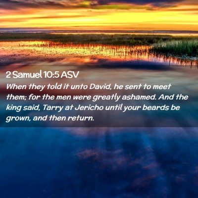 Picture 02 - 2 Samuel 10:5 ASV - When they told it unto David, he sent to meet - Bible Verse Picture