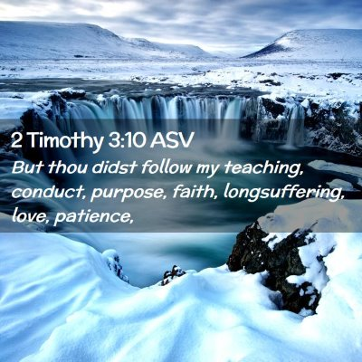 Picture 02 - 2 Timothy 3:10 ASV - But thou didst follow my teaching, conduct, - Bible Verse Picture