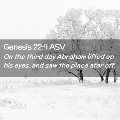 Picture 02 - Genesis 22:4 ASV - On the third day Abraham lifted up his eyes, and - Bible Verse Picture