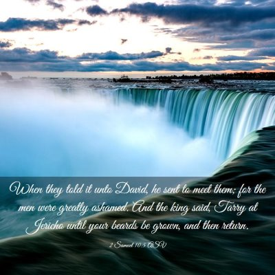 Picture 03 - 2 Samuel 10:5 ASV - When they told it unto David, he sent to meet - Bible Verse Picture
