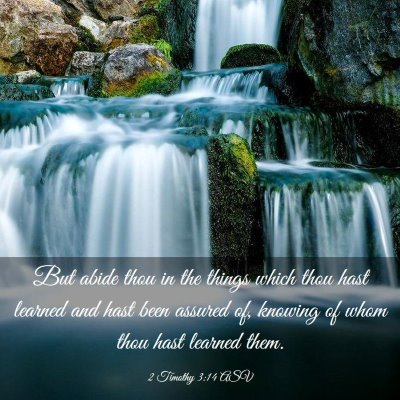 Picture 03 - 2 Timothy 3:14 ASV - But abide thou in the things which thou hast - Bible Verse Picture