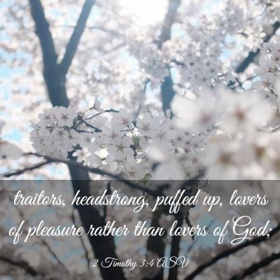 Picture 03 - 2 Timothy 3:4 ASV - traitors, headstrong, puffed up, lovers of - Bible Verse Picture