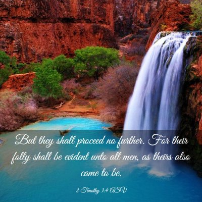 Picture 03 - 2 Timothy 3:9 ASV - But they shall proceed no further. For their - Bible Verse Picture