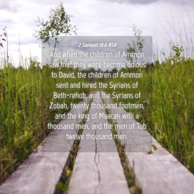 Picture 04 - 2 Samuel 10:6 ASV - And when the children of Ammon saw that they were - Bible Verse Picture