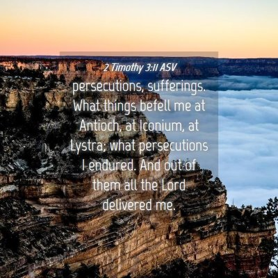 Picture 04 - 2 Timothy 3:11 ASV - persecutions, sufferings. What things befell me - Bible Verse Picture