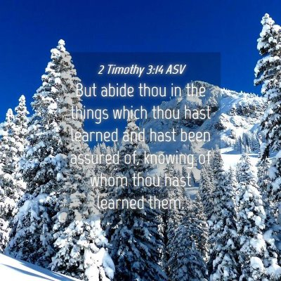 Picture 04 - 2 Timothy 3:14 ASV - But abide thou in the things which thou hast - Bible Verse Picture