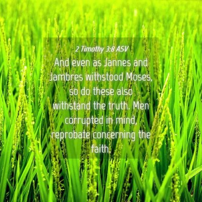 Picture 04 - 2 Timothy 3:8 ASV - And even as Jannes and Jambres withstood Moses, - Bible Verse Picture