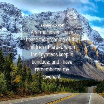 Picture 04 - Exodus 6:5 ASV - And moreover I have heard the groaning of the - Bible Verse Picture