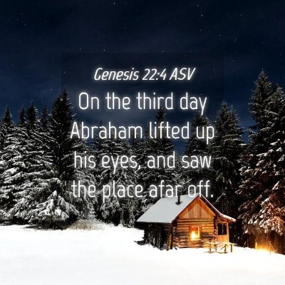 Picture 04 - Genesis 22:4 ASV - On the third day Abraham lifted up his eyes, and - Bible Verse Picture