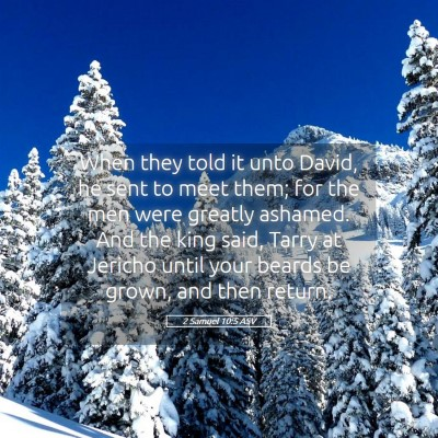 Picture 05 - 2 Samuel 10:5 ASV - When they told it unto David, he sent to meet - Bible Verse Picture