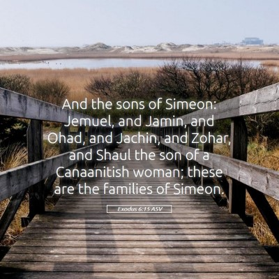 Picture 05 - Exodus 6:15 ASV - And the sons of Simeon: Jemuel, and Jamin, and - Bible Verse Picture