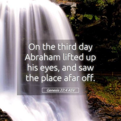 Picture 05 - Genesis 22:4 ASV - On the third day Abraham lifted up his eyes, and - Bible Verse Picture