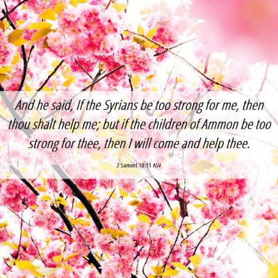 Picture 06 - 2 Samuel 10:11 ASV - And he said, If the Syrians be too strong for me, - Bible Verse Picture