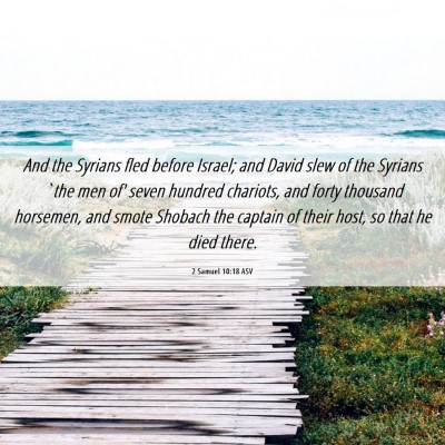 Picture 06 - 2 Samuel 10:18 ASV - And the Syrians fled before Israel; and David - Bible Verse Picture