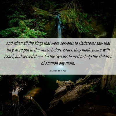 Picture 06 - 2 Samuel 10:19 ASV - And when all the kings that were servants to - Bible Verse Picture