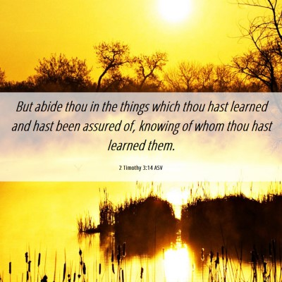 Picture 06 - 2 Timothy 3:14 ASV - But abide thou in the things which thou hast - Bible Verse Picture