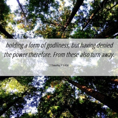 Picture 06 - 2 Timothy 3:5 ASV - holding a form of godliness, but having denied - Bible Verse Picture